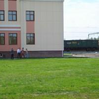 Газон в Омске